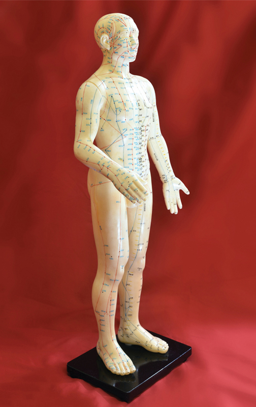 Fig. 3 Mannequin showing channels head to toe